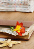 Diary, old letters and red freesia flower on wooden table. Roman — Stock Photo