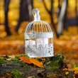 Beautiful bird cage in autumn forest — Stock Photo #38938717