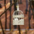 Beautiful bird cage in autumn forest — Stock Photo #38938887