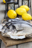 Gilt-head bream fishes in wicker basket on wooden table. Lantern — Stock Photo