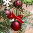 Stock Photo: Red christmas balls on fir branch.