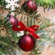 Red christmas balls on fir branch. — Stock Photo