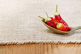 Red hot chili peppers in a spoon. Hessian background, copy space — Stock Photo