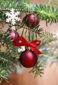 Red christmas balls on fir branch. — Foto de Stock