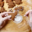 Decorating gingerbread cookies for christmas. Steps of making bi — Stock Photo #40992713