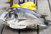Gilt-head bream fishes in wicker basket on wooden table — Stock Photo