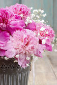 Stunning pink peonies in silver bucket — Stock Photo