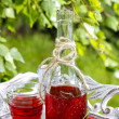 Bottle of cherry juice in the garden — Stock Photo #47583587