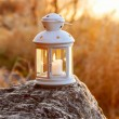 Beautiful lantern on wooden table in autumn forest — Stock Photo