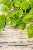 Melissa (lemon balm) leaves on wooden table — Stock Photo