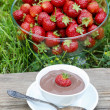 Creamy chocolate pudding on wooden table in the garden. Glass bo — Stock Photo #47942169