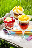 Layer fruit desserts on wooden tray. Summer garden party — Stock Photo
