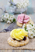 Fairy yellow cake. Beautiful blooming apple twig in the backgrou — Stock Photo