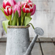 Bouquet of pink and red tulips in silver watering can — Stock Photo #47977033