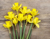 Yellow daffodils on wooden background — Stock Photo