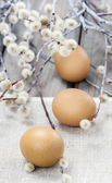 Easter eggs and catkins on rustic wooden table — ストック写真