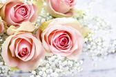 Beautiful pink roses and Gypsophila (Baby's-breath flowers). Wed — Stock Photo