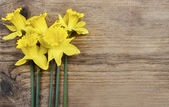 Beautiful yellow daffodils on brown wooden board. Top view, copy — Stock Photo