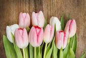 Beautiful pink and white tulips on wooden background. — Stock Photo