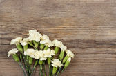 Yellow carnation flowers isolated on brown wooden background. Co — Stock Photo