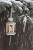Белый фонарь висит на ветке ели. — Стоковое фото