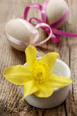 Single daffodil flower and easter eggs in the background — Stockfoto