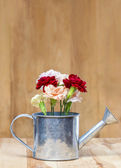 Beautiful carnation flowers in silver watering can, on wooden ba — Stock Photo