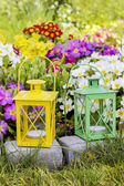 Colorful primula flowers and lanterns in spring garden — Stock fotografie