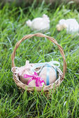 Basket of easter eggs standing on fresh grass — Stockfoto