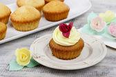 Beautiful rose cupcake — Stock Photo