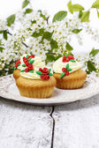 Beautiful rose cupcake and bird cherries in the background — Stockfoto