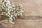 Baby's breath (gypsophilia paniculata) on wooden background — Stockfoto