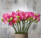 Pink freesia flowers on wooden background. Copy space — Foto Stock