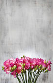Pink freesia flowers on wooden background. Copy space — Stockfoto