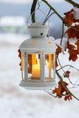 白色的灯笼挂在橡树枝上。美丽的冬天的晚上 — 图库照片