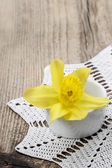 Single daffodil flower in white ceramic pot on wooden background — 图库照片