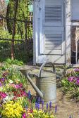Watering plants in beautiful spring garden — Stock Photo