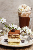Tiramisu cake on white plate. Blossom apple branch — Stock Photo