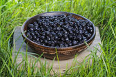Wooden bowl of fresh blueberries. Selective focus — Stock Photo