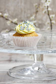 Beautiful edelweiss cupcake — Stock Photo
