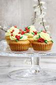 Beautiful rose cupcakes — Стоковое фото