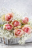Beautiful pink roses and Gypsophila (Baby's-breath flowers) — Stock Photo