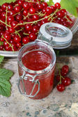 Red currant jelly in preserving glass — Stock Photo