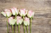 Pastel pink roses on wooden background — Stockfoto