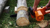 Chainsaw in the hands — Stock Photo
