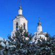 Ortodoxal church over the blue sky vertical — Stock Photo
