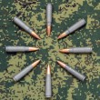 Eight cartridges on camouflage background bullets oriented inside — Stock Photo #38576423