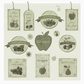 Set of fresh organic, bio labels and Elements. Vintage vector design. — Stock Vector