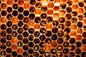 Honeycomb — Foto Stock