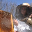 Young girl beekeeper working in apiary — Stock Photo